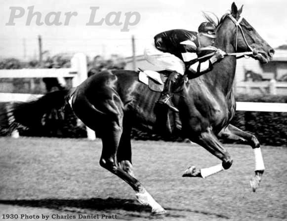 Phar-Lap-jockey-Jim-Pike-riding-Flemington-race-track-1930-Melbourne-Cup-horse-racing-Charles-Da.jpg