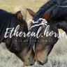 ethereal.horses